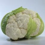 Семена цветной капусты МИСОРА F1,  KITANO SEEDS